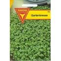 Gartenkresse, einfache
